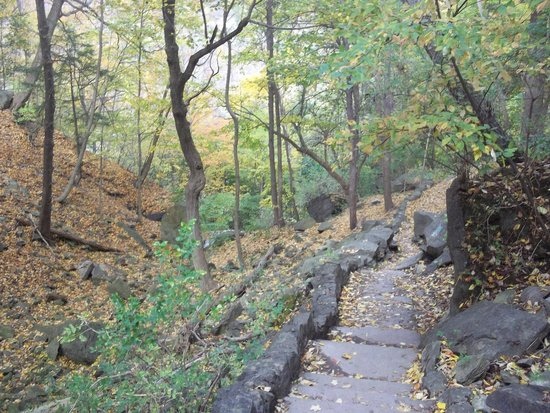 Devil's Hole State Park : and more stairs...