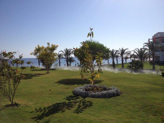 Isola di hamata foto di fantazia resort marsa alam - Giardini fantastici ...