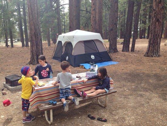 North Rim Campground: Huge sites