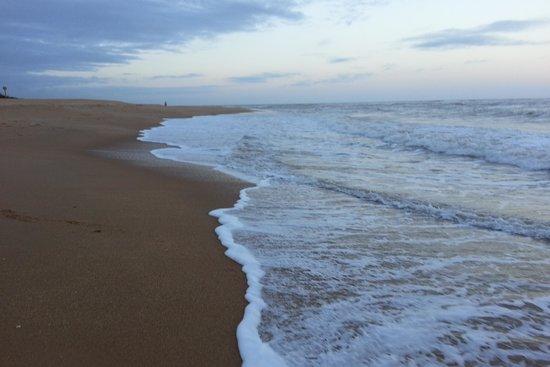 Baleia Beach