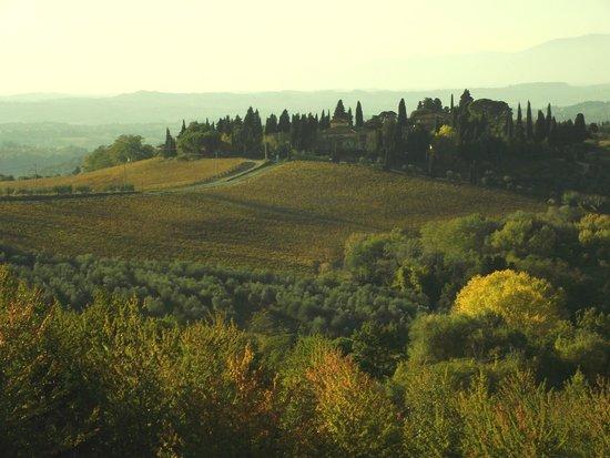 Montespertoli, Italia: la via Trecento dalla motolocanda