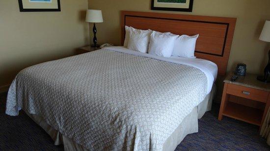 Embassy Suites by Hilton Dorado del Mar Beach Resort: Nice and Comfortable