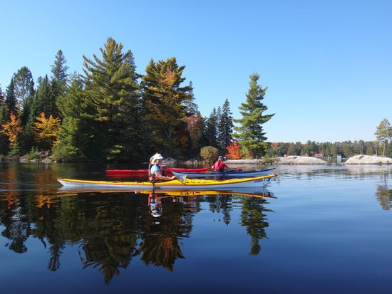 Barrie, Canada: Touring Algonquin Park