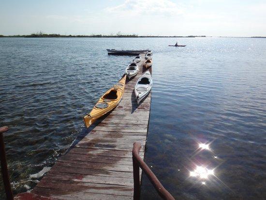 Barrie, Kanada: Cuba Kayak Adventures