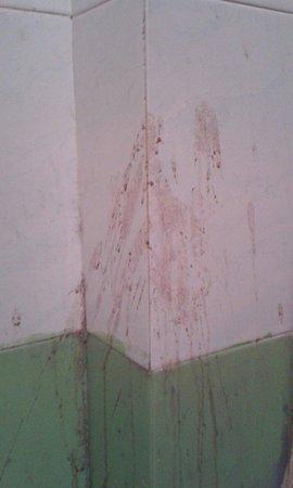Hotel Mama Luna: La salle de bain la plus immonde de ma vie