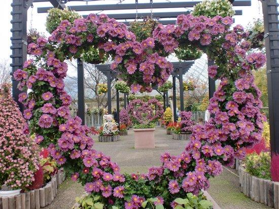 Tottori Hanakairo Flower Park: ♡でほのぼの