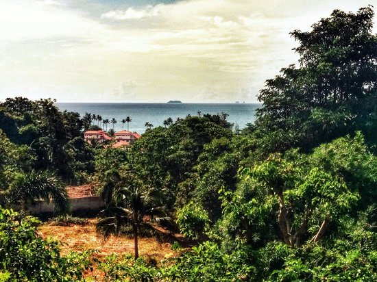 Freedom Estate: The view from our balcony