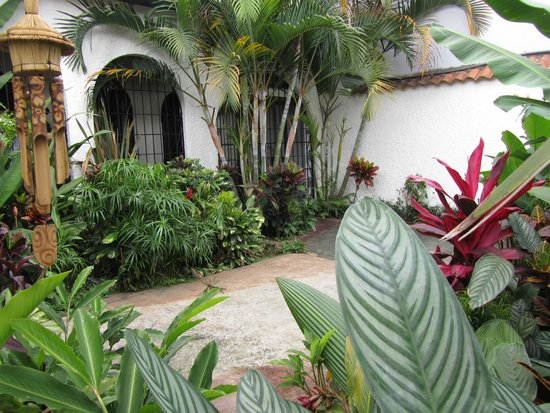 Hotel Casa 69: Front Gardens