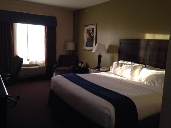 Holiday Inn Express Hotel & Suites Pryor: King room