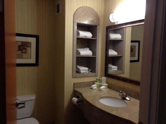 Holiday Inn Express Hotel & Suites Pryor: Bathroom