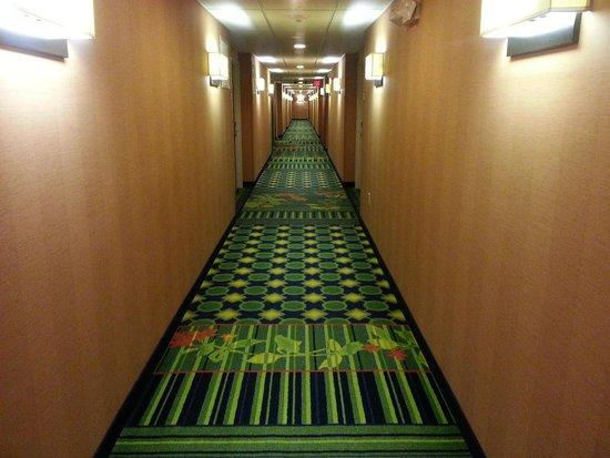 Fairfield Inn & Suites Plainville: Hallway