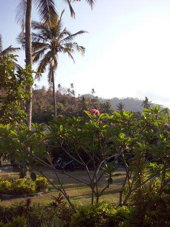 Indah Homestay: uitzicht op tuin