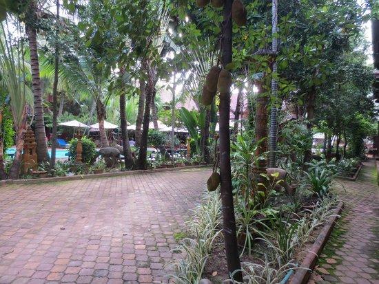Neak Pean Hotel: Hotel