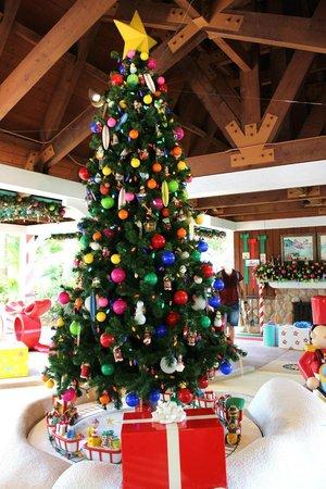Weihnachtsbaum Natürlich.Und Natürlich Ein Weihnachtsbaum Picture Of Disney S Winter