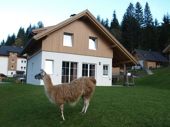 Landal Bad Kleinkirchheim: House