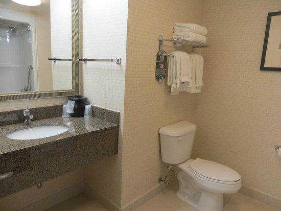 Holiday Inn Express & Suites Kincardine : Vanity area within bathroom