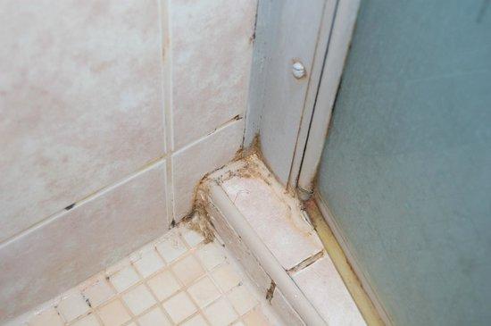 Marmara Hotel Budapest: Shower cubicle