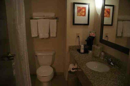 Holiday Inn Express & Suites Tupelo: Bathroom
