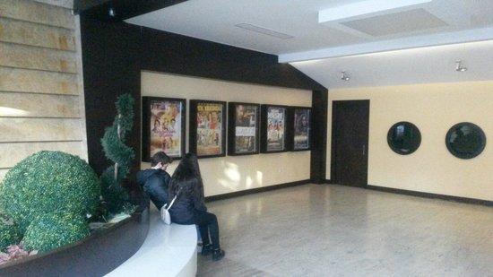 Avsar Cinema