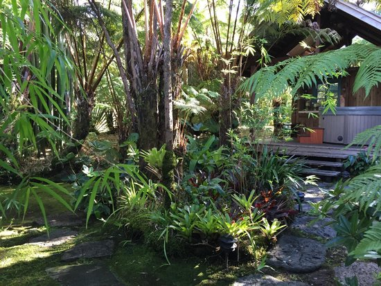 Volcano Teapot Cottage: View of the hot tub, surrounded by lush gardens.