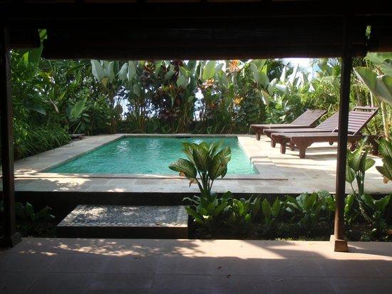 Lovina Beach Houses: salon vue piscine
