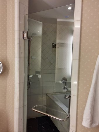 Pullman Shanghai Skyway Hotel: The tub and the shower stall.