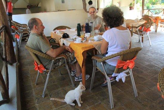 Jacyjoka Apartments : breakfast time