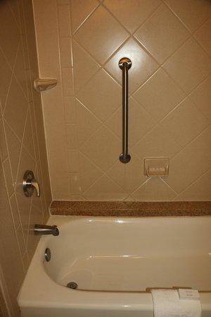 Hampton Inn Vicksburg: Shower