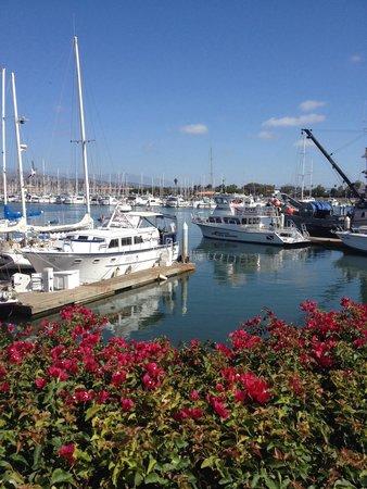 Ventura Harbor Village Marina