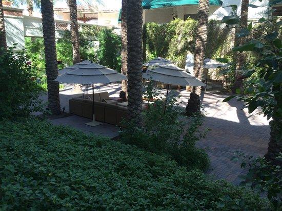 Arizona Grand Resort & Spa: One of the many lounge areas