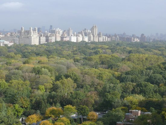 The Sherry-Netherland Hotel : View of Central Park from room