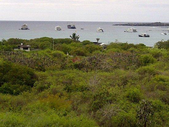 Hotel  La Casa de Judy: Belle vue sur le Parc des Galapagos et l'océan