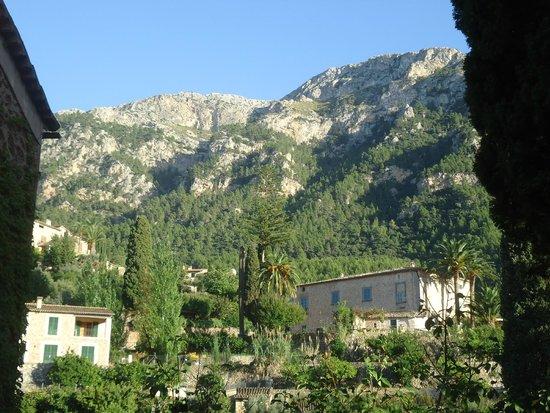 Pension Miramar: Countryside around
