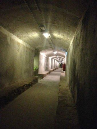 Museo Refugio de la Guerra Civil: Tunel