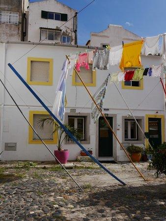 Casa do Patio by Shiadu: Patio