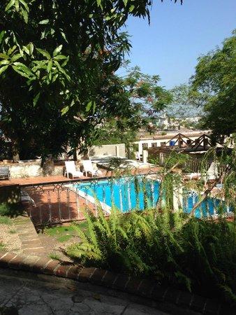 Piscina contornata da alberi di mango picture of la rosa - Piscine di rosa ...