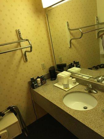 Days Inn Newark Wilmington: Banheiro