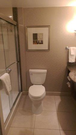 Hilton Garden Inn Toronto Downtown: Bath. Full length shower door