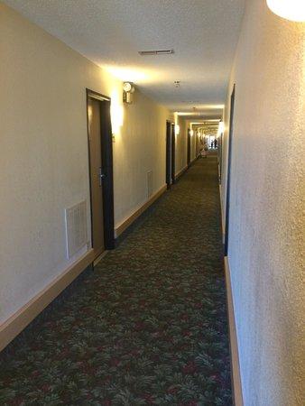 Super 8 Metropolis: Hallway
