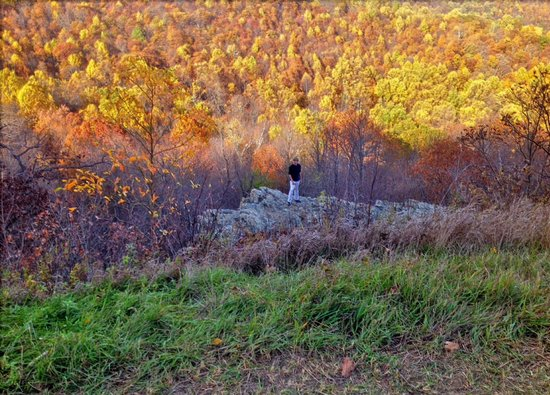 Once Upon a Mountain: Skyline Drive in Autumn