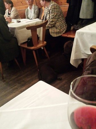 Gasthaus Rebhuhn: Don't waste your time in this restaurant.