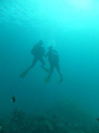 Native Spirit Scuba: Try dive Scuba
