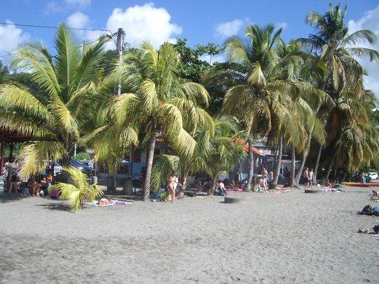 Hôtel Fleur d'Epée : plage de Malendure