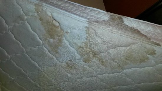 Lady Luck Hotel: Bottom of mattress (obviously flipped over after incident)