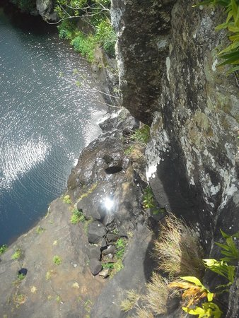 Tamarin Falls : 5