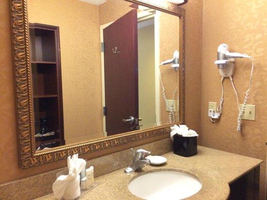 Hampton Inn & Suites Wellington: Gran espejo en el baño