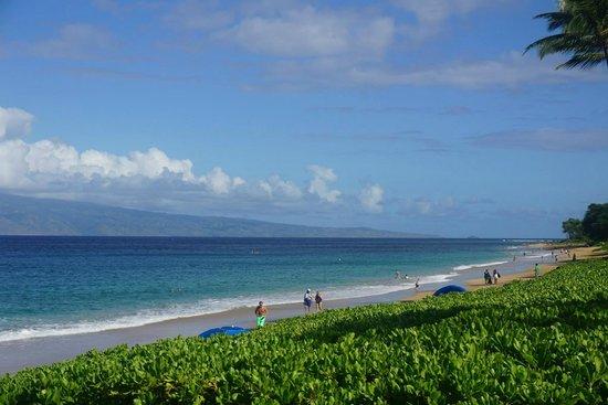 Royal Lahaina Resort Kaanapali Beach Behind Hotel Less Than 5 Mins From