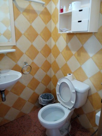 Arya Boutique Room: Clean toilet