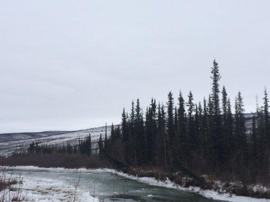Steese Highway : River