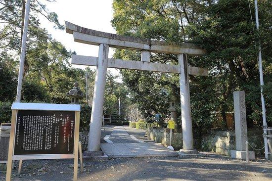 Miho Shrine : 神社裏手
